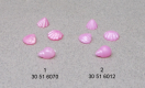 Seashells Set Pink 2